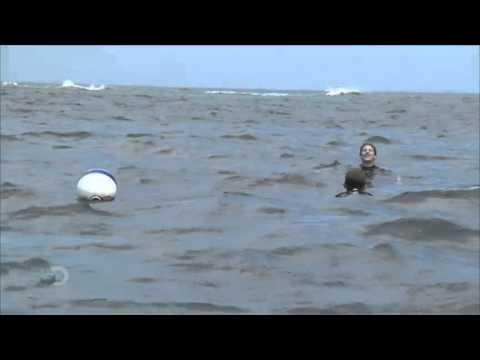 Shark Week - Andy Samberg   Warming Up*