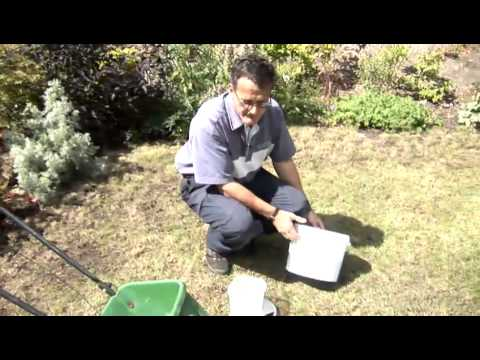 How To Apply Fertilizer Products On Your Lawn