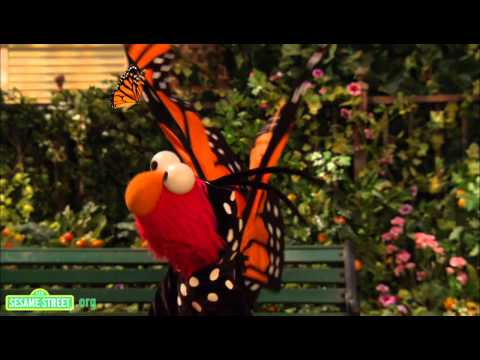 Sesame Street: Song: Little Butterfly Friend