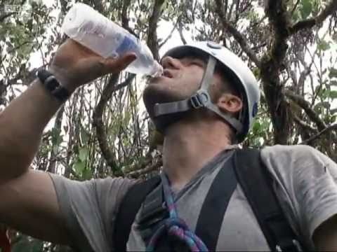 Climbing the Summit - Expedition Borneo - BBC
