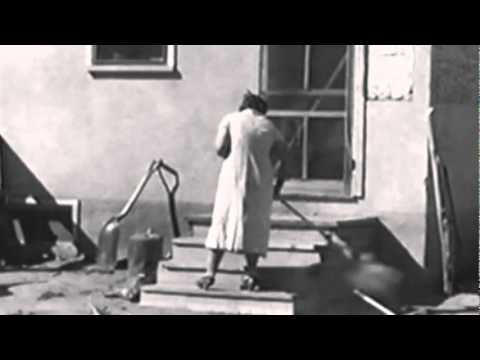 Stinging Dust and Forgotten Lives: The Dust Bowl (Drought and Dust)