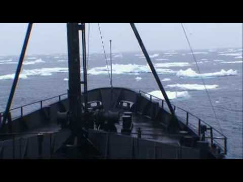 Whale Wars: Iceberg Collision