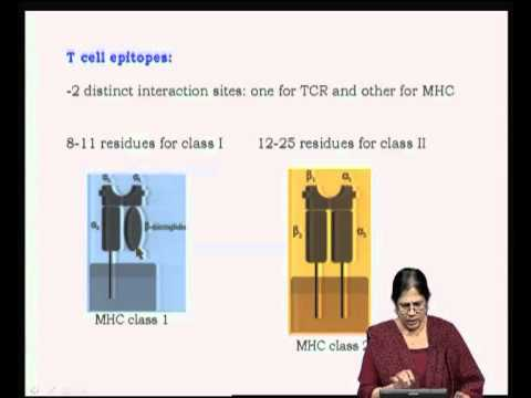 Mod-21 Lec-38 Antigens and Immunogens