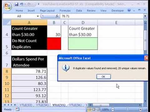 YTLE#55: Excel 2007 Remove Duplicates and COUNTIF function