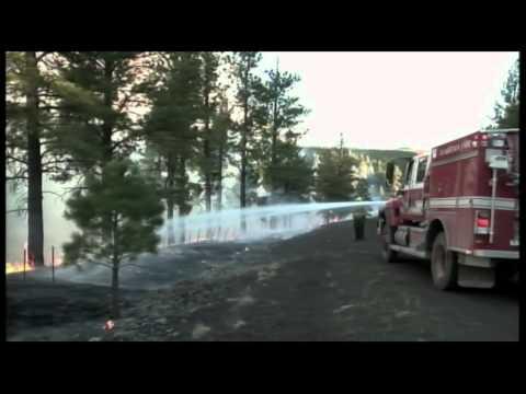 News Wrap: Ariz. Firefighters Ramp Up Battle Against Wallow Fire