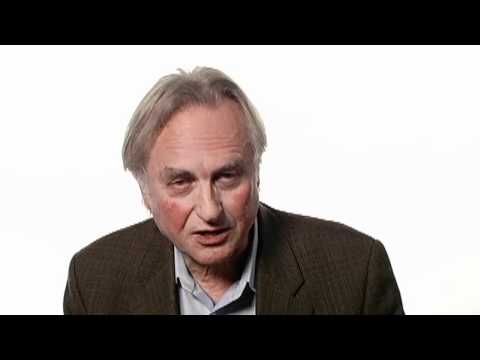 Richard Dawkins: The Importance of Doing Useless Things