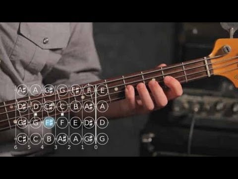 Bass Scales: How to Play the E Minor Scale