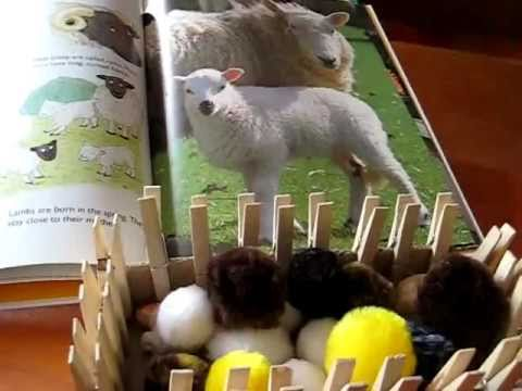 Preschool - Science: Study on sheep and farm. Incorporate books, toys, puppets, crafts and songs.