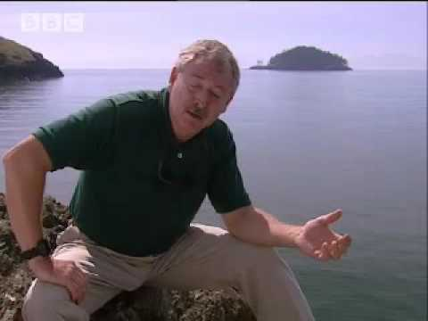 Fearing the future - Mega Tsunami - BBC