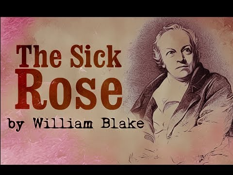 The Sick Rose by William Blake - Poetry Reading