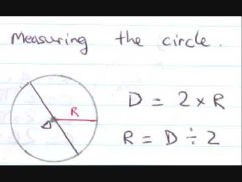 Parts of a circle and the circumference