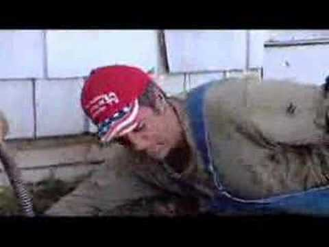 Dirty Jobs - Animal Magnetism