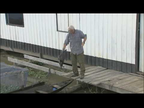 River Monsters: Test It Out