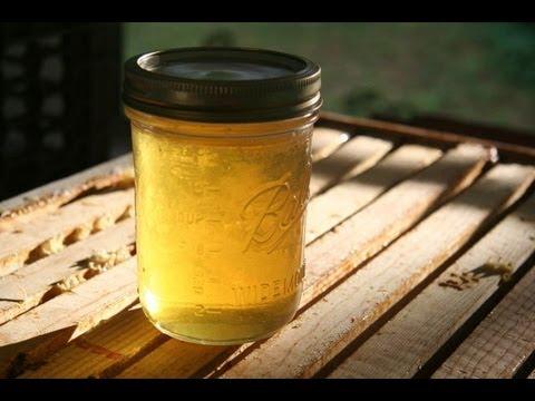 How to Harvest Honey Beekeeping : GardenFork.TV
