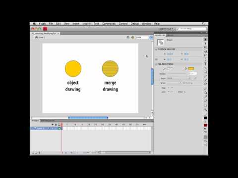 Flash Professional: Selecting and modifying shapes | lynda.com