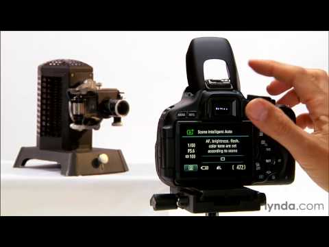 Canon Rebel T3i tutorial: How to use autofocus | lynda.com