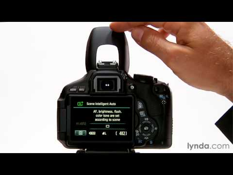 Canon Rebel overview: Using flash in auto mode | lynda.com