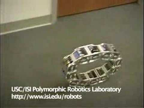 Modular robot's wriggles show greater flexibility 2