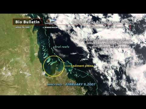 Science Bulletins: Runoff Flows Beyond Coral Reefs