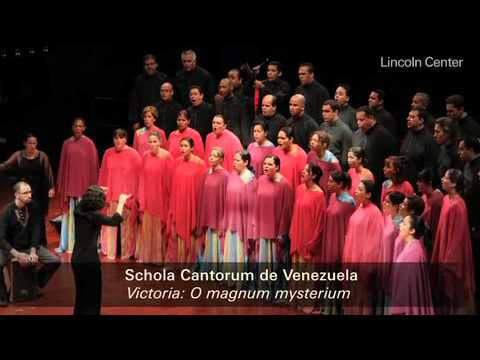 White Light Festival 2011: Schola Cantorum de Venezuela