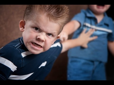 Aggressive Behavior | Child Psychology