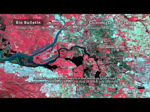 Science Bulletins: California Delta in Crisis