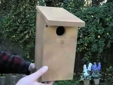 How to Build a Bluebird Nesting Box Bird House