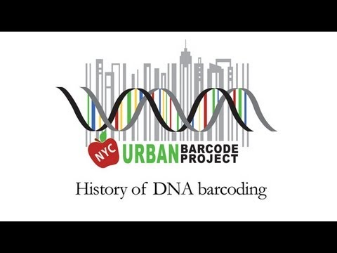 The History of DNA Barcoding