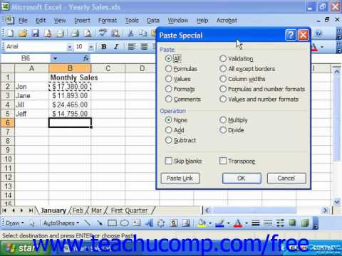 Excel 2003 Tutorial Using Paste Special Microsoft Training Lesson 16.1