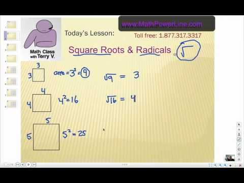 How to Understand Radicals (Square Roots)