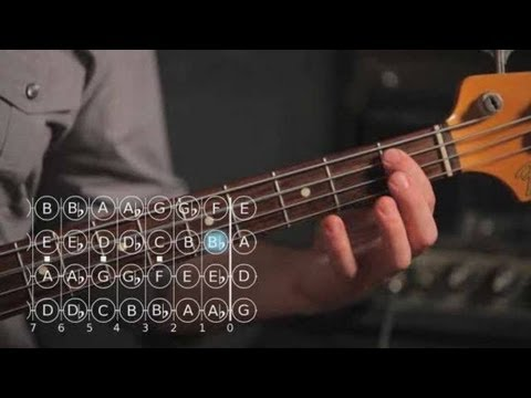 Bass Scales: How to Play the F Major Scale
