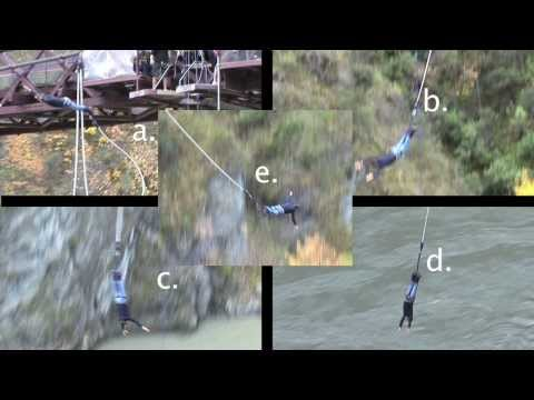 Acceleration of a Bungy Jump