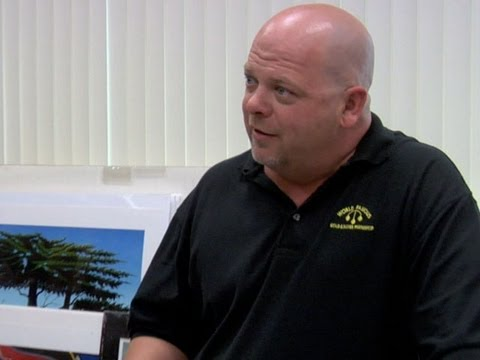 Pawn Stars - Famous Photos