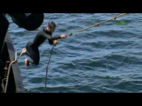 Whale Wars: Sea Shepherd Rope Swing!