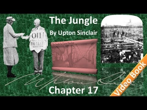 Chapter 17 - The Jungle by Upton Sinclair