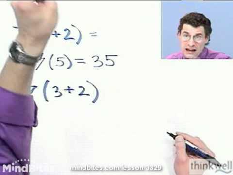 Int Algebra: Properties, Identities, & Inverses