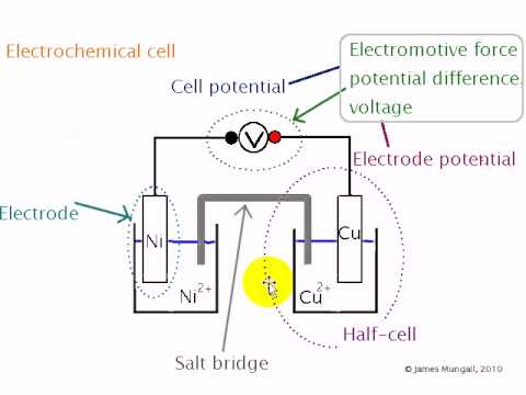 Standard Electrode Potentials 2. Describing the Electrochemical Cell