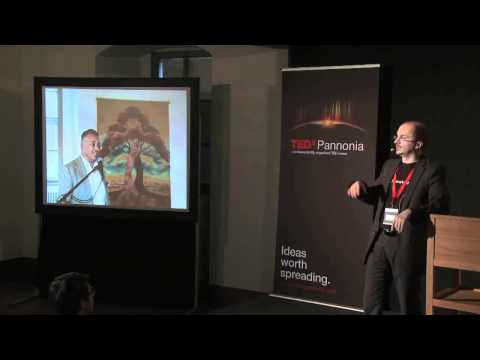 TEDxPannonia 2011 - Gabor Karsai - The Coalescence of Tongues of Flame