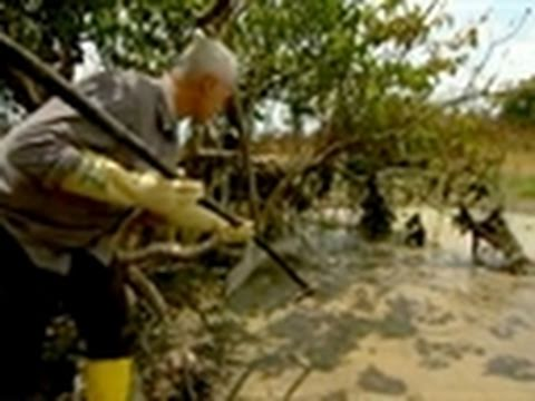 River Monsters- The Heart-Stopper Fish