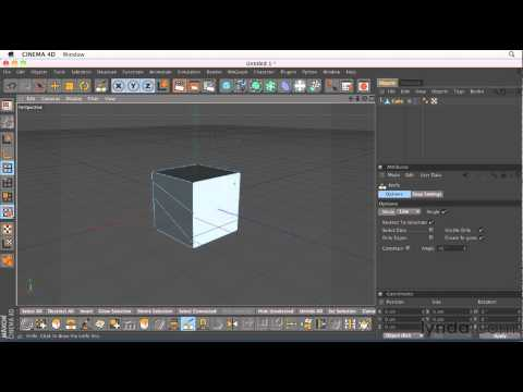 How to use the Cinema 4D Knife tool | lynda.com tutorial