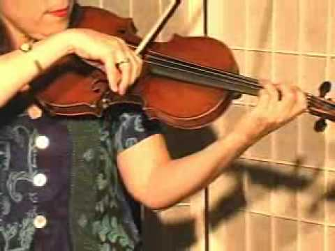 Violin Lesson - How To Play Danman's Print Library # 114