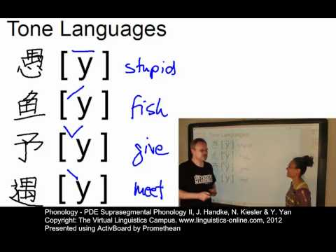 Phonology - PDE Suprasegmental Phonology II (Tonal Effects)