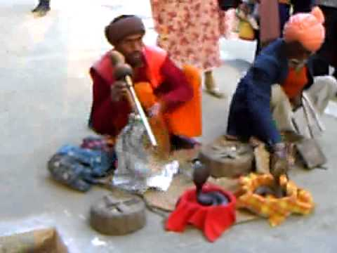 Snake Charming in New Delhi India
