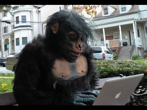 The Infinite Monkey Theorem... in 1080p