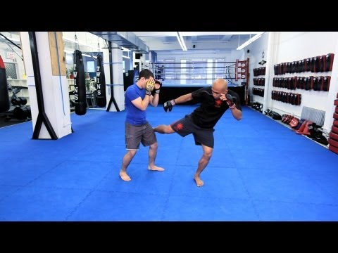 Kicks | MMA Fighting Techniques