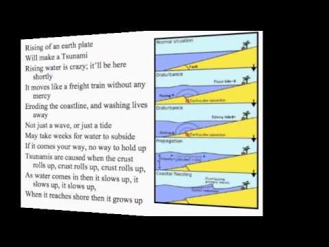 Crust Rolls Up-Tsunami Song