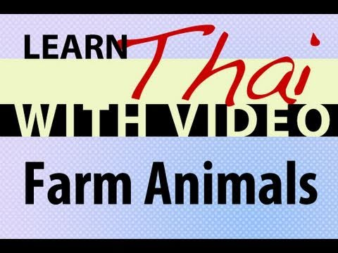 Learn Thai with Video - Farm Animals