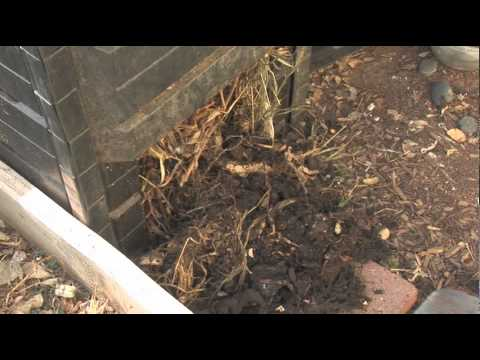 How To Use A Composter