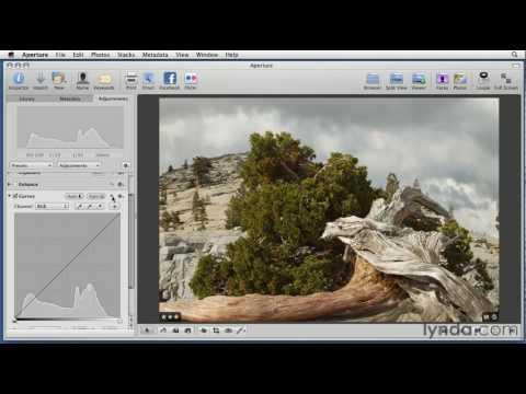 Aperture: How to use the Curves tool | lynda.com tutorial