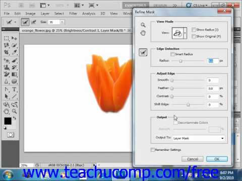 Photoshop CS5 Tutorial The Masks Panel Adobe Training Lesson 10.5